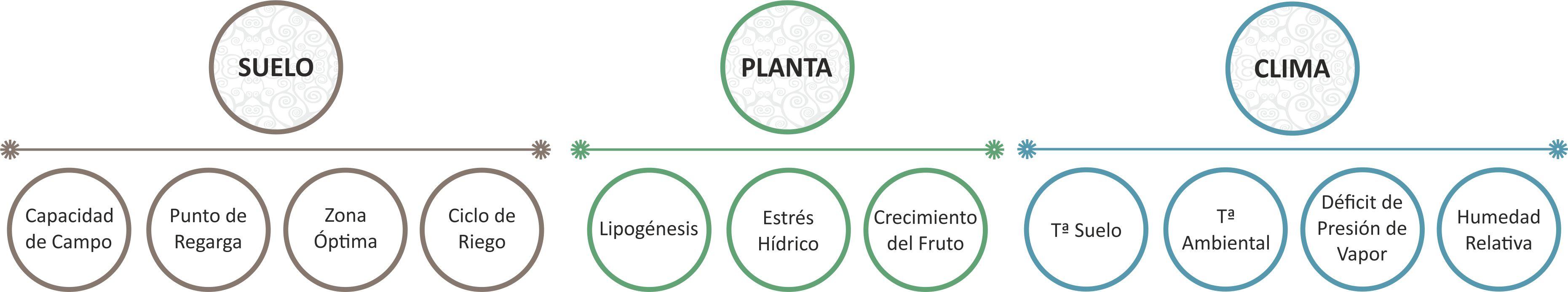 Parámetros Suelo-Planta-Clima by AGROCONSULTING